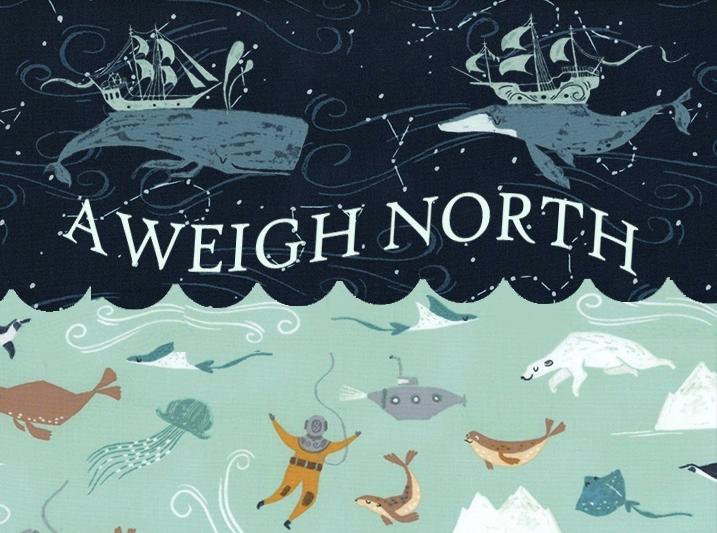 Aweigh North by Dear Stella